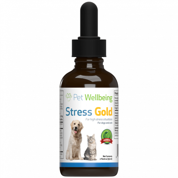 High Stress Solution For Cats